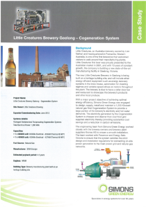 little creatures case study 1