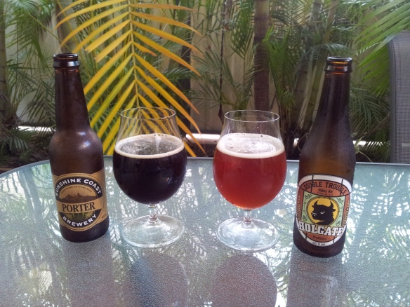 sunshine coast porter holgate double trouble