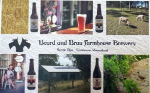 rsz_beardandbrau_postcard