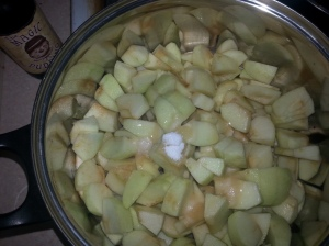 Apples and Magic Pudding